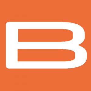 blmreo.com favicon
